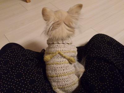2012-12-02+blog1_convert_20121208125603.jpg