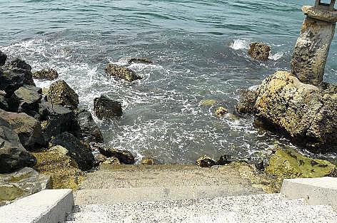 ワカメを採る海♪