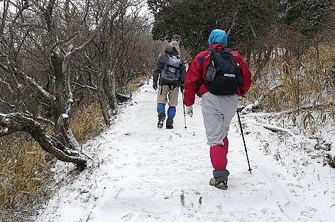 新雪を歩きます♪