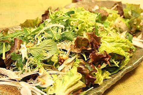 野菜のサラダ♪