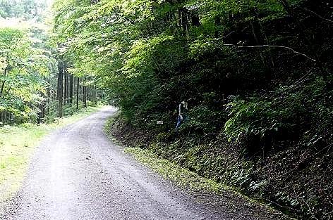 登山道へ♪