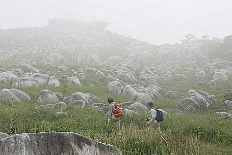 霧の羊群原♪