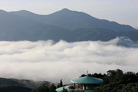 湯布院の朝霧♪