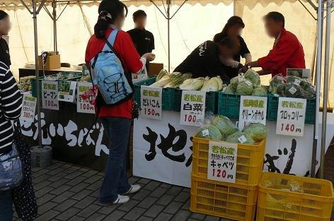 若松野菜♪
