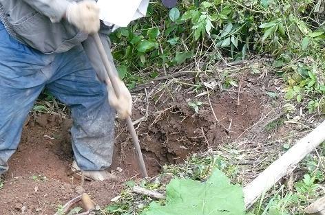 深く掘ります♪