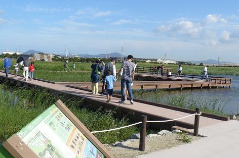 湿地の上の観察デッキ♪