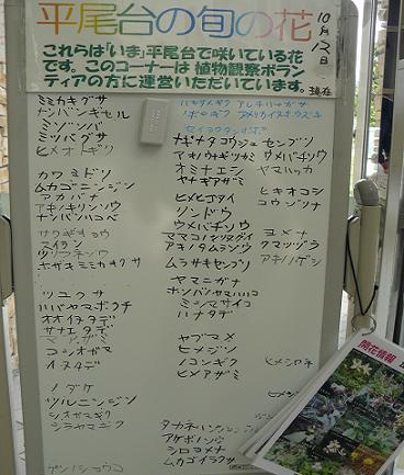 野草情報♪