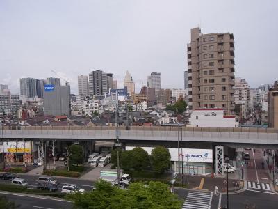 天婦羅うえじま (46)