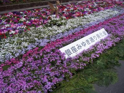 みゆき通りの花 (3)