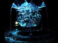 アートアクアリウム展 (44)