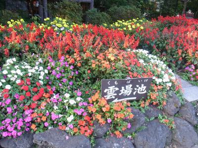旧軽井沢 日帰り (112)