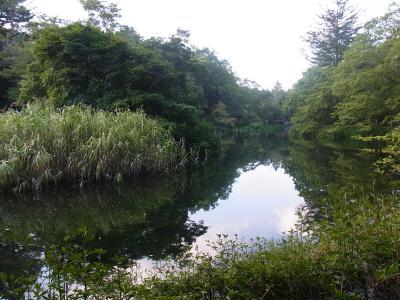 旧軽井沢 日帰り (118)