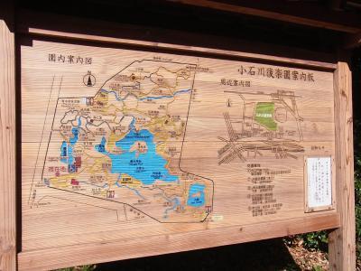小石川後楽園 靖国神社 (5)