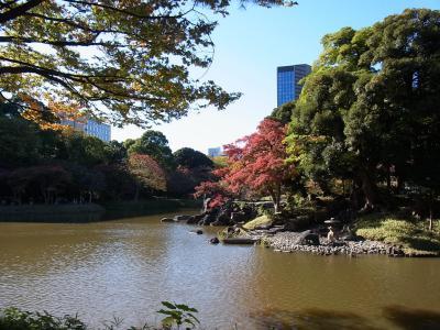 小石川後楽園 靖国神社 (10)