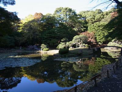 小石川後楽園 靖国神社 (14)