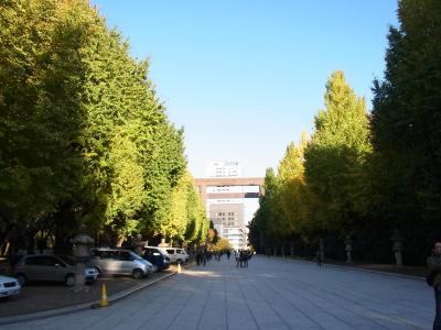 小石川後楽園 靖国神社 (30)