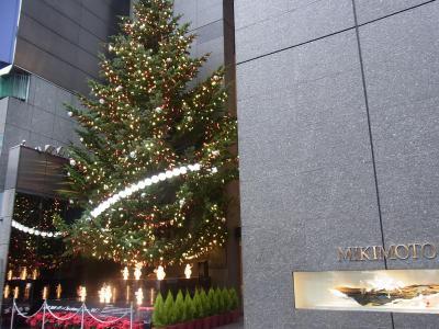 銀座イルミネーション2012 (10)