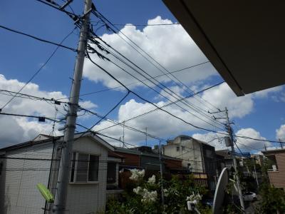 P8020349_convert_20120805085752.jpg