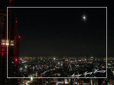 201312_japan_5.jpg