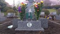 富士霊園_つね婆さんのお墓_20120422
