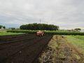 トラクタで耕します