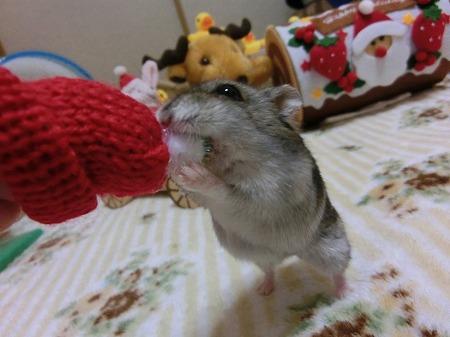 食べるでしゅ~!