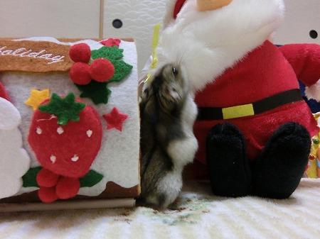 くららのプレゼント忘れないでね