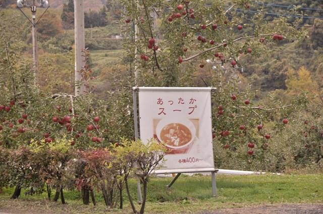 11warm-apple.jpg