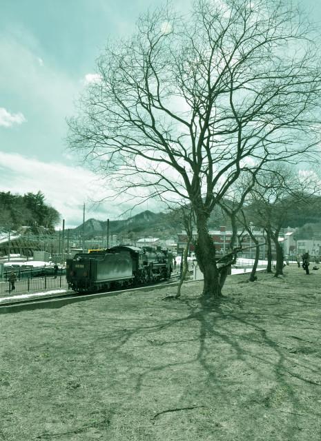 20120324before1.jpg
