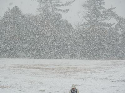 雪と大阪のおっちゃん