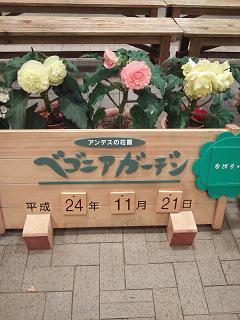 NEC_1659.jpg
