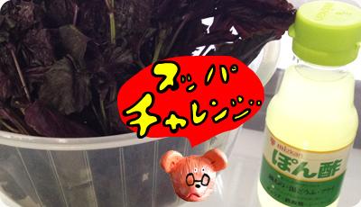 2012_0705_01.jpg