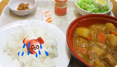 人生最後のカレー.jpg