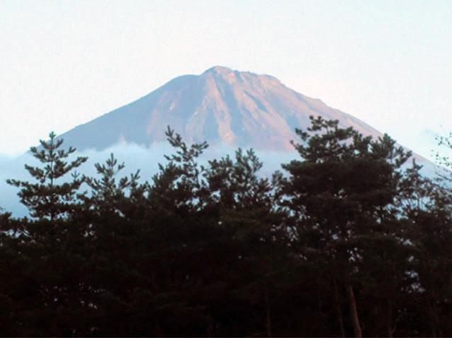 fuji_2013121214281777d.jpg