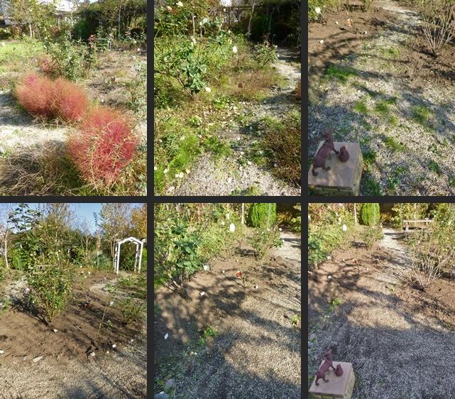 P1120770-horz-vert.jpg