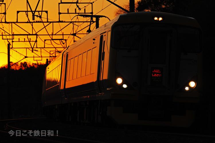 _MG13272.jpg