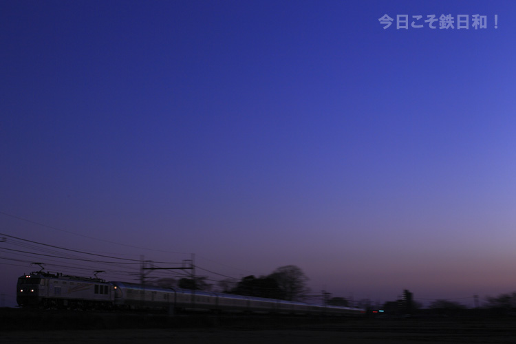 _MG13561_1.jpg