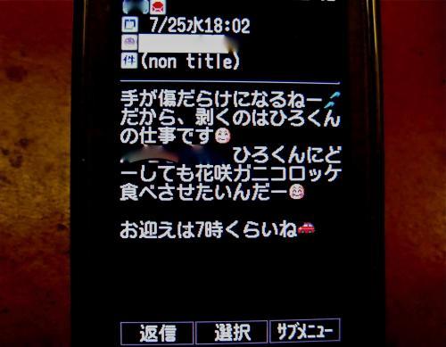 CIMG2879_convert_20120728224859.jpg
