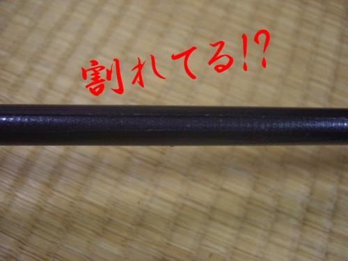 naka0405_9.jpg