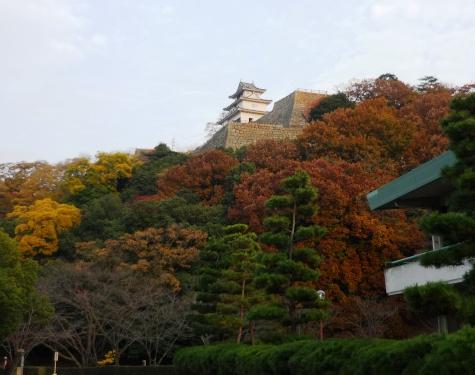 a丸亀城P1330841