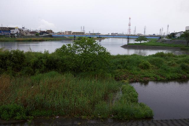 ④矢上川が鶴見川に合流
