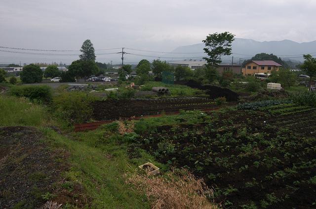 ⑯少年戦車学校跡地