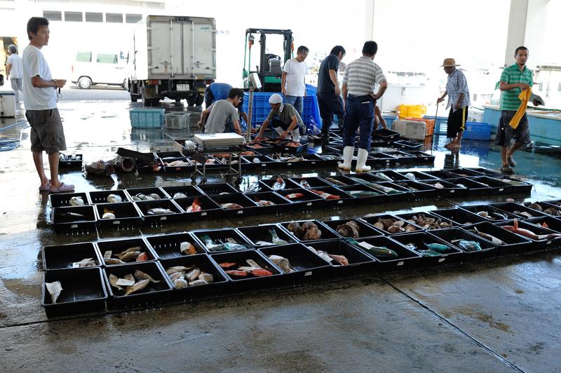 辺土名の魚市場