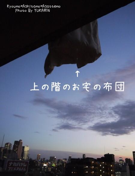2012080703.jpg