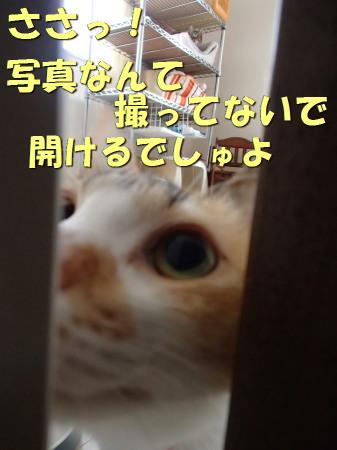 20131213_18.jpg