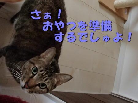 20131213_57.jpg