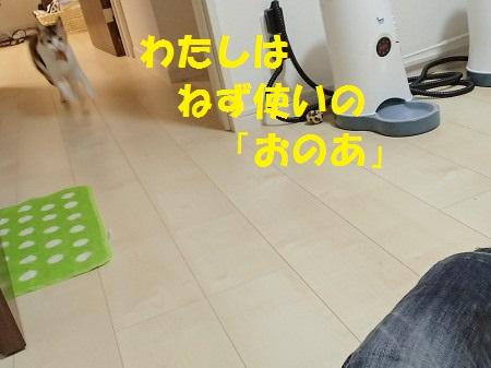 20131220_59.jpg