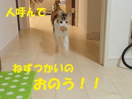 20131220_70.jpg