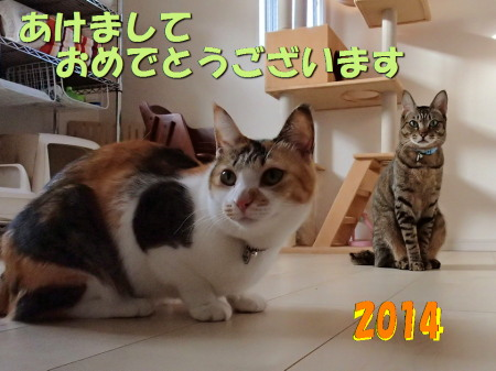 20140101_90.jpg