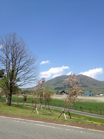 20120506-003.jpg